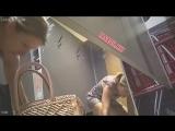 Женщина в примерочной на скрытую камеру - zasadil ne