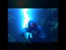 Лучшее место для фридайвинга в мире - Blue Hole Дахаб, Египет
