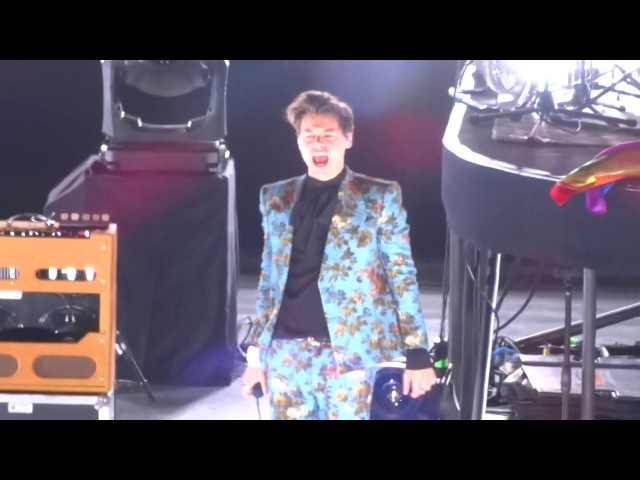 Harry styles - kiwi / los angeles