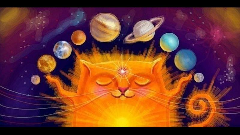 Кошка - проводник космической энергии