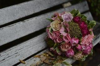Лаванда цветы воронеж