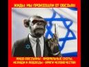 Россиянин ПРОСНИСЬ! Ты в ОККУПАЦИИ под иудо-сионистким игом!