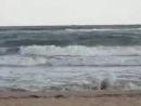 Нина Пантнелеева У моря у синего моря