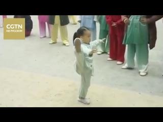 Трехлетняя малышка старательно занимается тайцзицюань