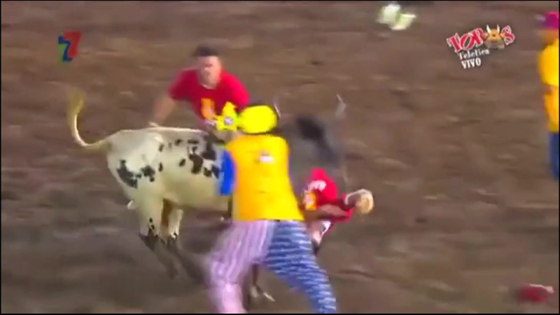 Bull Striker