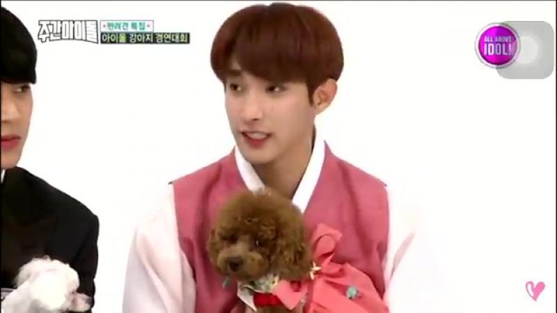 The way seokmin kissed coco's head ㅠㅠ