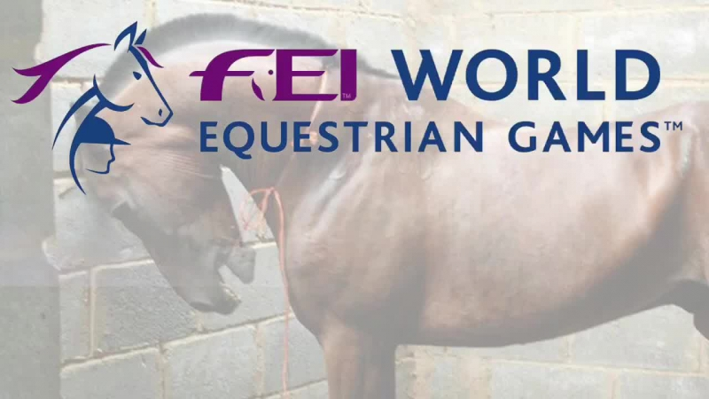 Is the Fédération Equestre Internationale (FEI) Guilty of Animal Abuse
