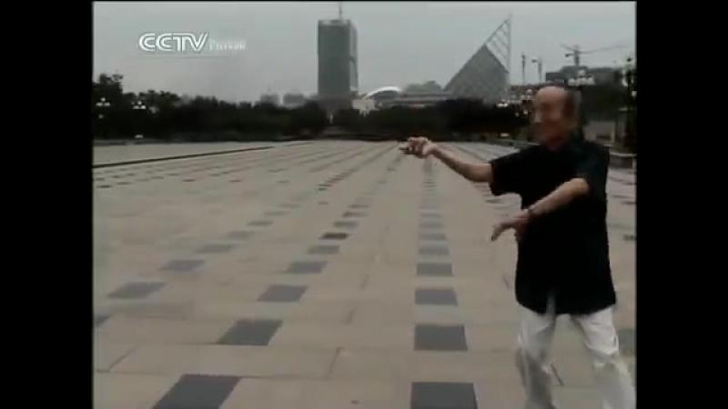 Легенда о боевом искусстве Китая- Багуачжан. .(Ушу, боевое искусство, Даосская философия )