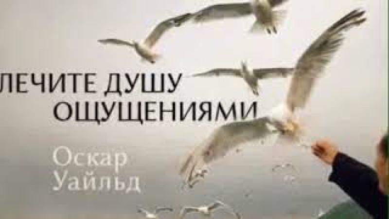 Душа моя- ночная птица...