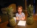 Kion diras ananaso