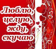 Люблю, целую, жду, скучаю*****