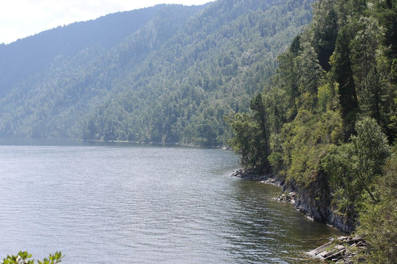 официальном серебряные берега золотого озера телецкого фото вариаций его