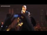 Metallica - The ecstasy of gold