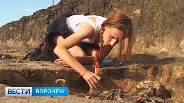 В Новохоперском районе найдено около 200 древних курганов