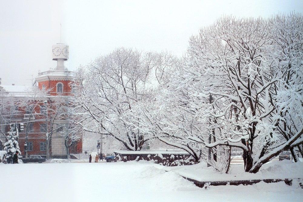 красивые зимние фотографии барнаул как меня