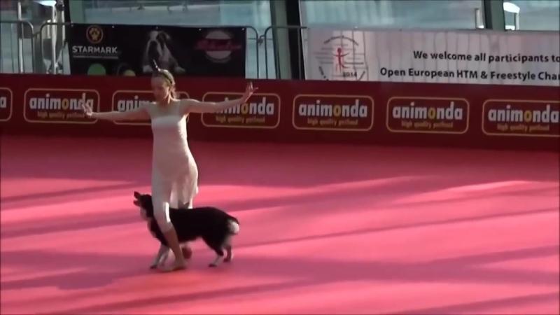 Собака и её хозяйка просто ошеломили зрителей