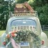 организация свадеб, свадебный декор и флористика