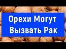 Орехи могут быть Опасны Юрий Фролов
