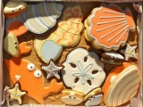 Sweet Dani B's Swirly Shell Cookie How-to