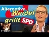 Anne Will - AfD Alice WEIDEL GRILLT SPD Oppermann Dieselverbot Feinstaubirrsinn Grenzwerte