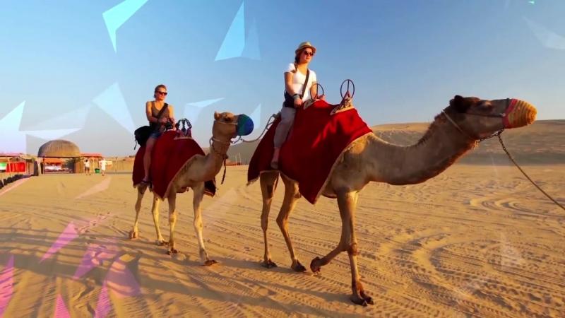Учебный Семинар для Лидеров Дубай в честь 60 летия Amway