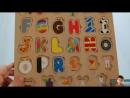 Renkli Oyuncak Harflerle, Hayvan, Eşya, Meyve ve Araç İsimleri - Türkçe