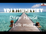 VDJ V!$hnev$ky Deep House [Silk Music] [Relax Edition]