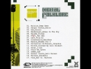 P a L Час Пик фрагмент CD cборника Digital Folklore Mediaton records SPB 2006