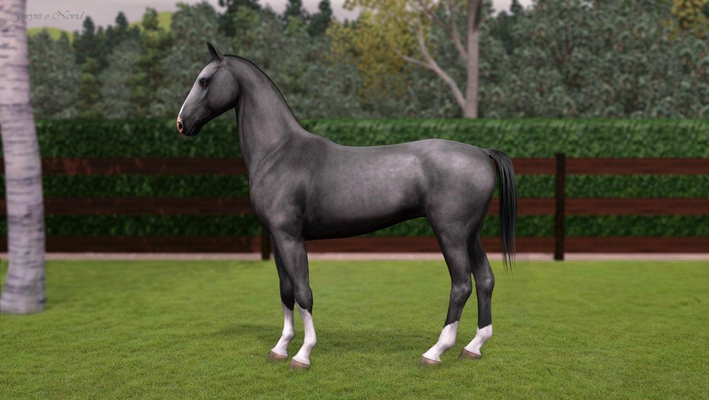 Регистрация лошадей в RHF 2 - Страница 8 2fJLLIXYSow