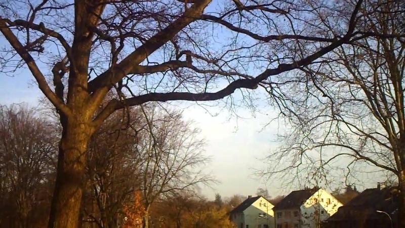 Nach brutalen Chemtrailangriff heute morgen, nun blauer Himmel. :-)