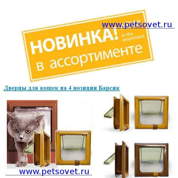 https://pp.userapi.com/c841522/v841522943/3bb50/Fn7vrPKWMl0.jpg