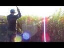 Уборка плантации ивы