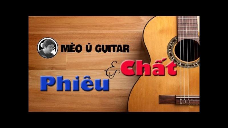 15 bản Độc tấu Guitar cực Phiêu và Chất - Mèo Ú Guitar