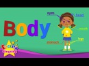 Kids vocabulary - Body - parts of the body - Learn English for kids - English educational video