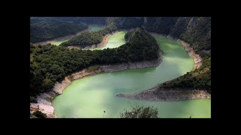 Джунгли Африки красота природы Обитатели Джунглей Документальный фильм National Geogra