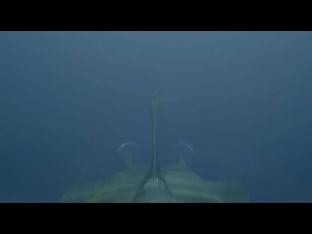 Курск:подводнаялодкавмутнойводе