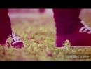 Ummon guruhi -  Qanday ayt.mp4
