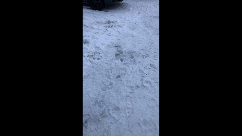 Подслушано JDMщики — Live