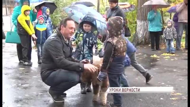 В Данилове презентовали уникальный проект «Город собак»