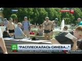 Корреспондента НТВ избили во время прямого эфира