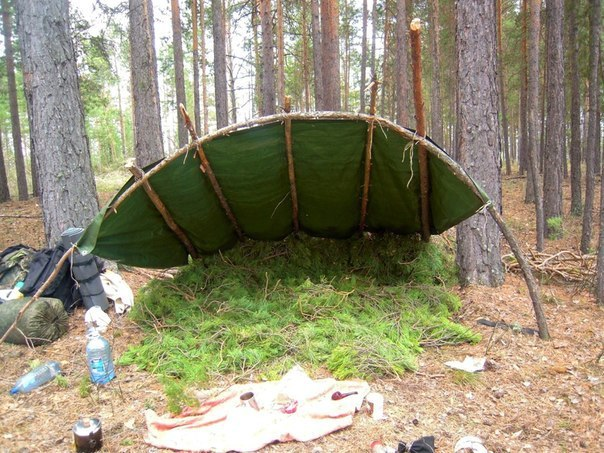 0alxgWtgnv4 - Делаем простейшее укрытие в лесу для трех человек