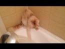 Бу и душ