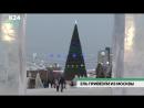Ель на площади Сахарова