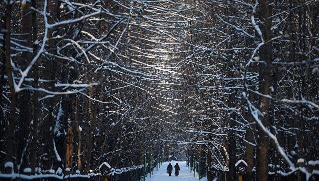 Чего ждать от погоды в Москве