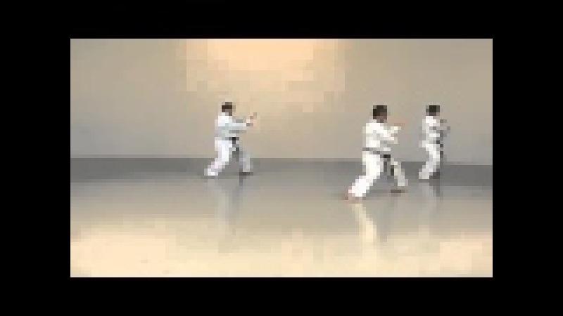 Hoshu Ikeda Betsuden Kata