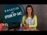 5 фактов об Epson XP-342, которые вы должны знать