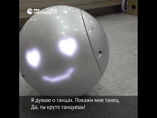 Японский робот-компаньон