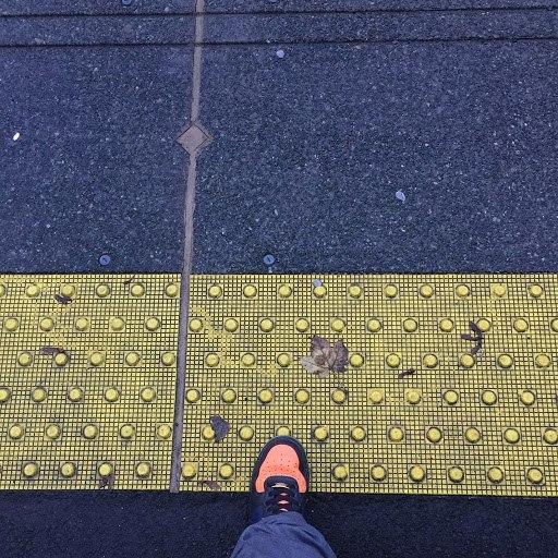 Shogun альбом No More Yellowface!