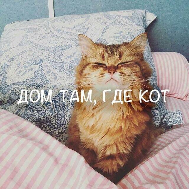 Светлана Асылгараева | Альметьевск