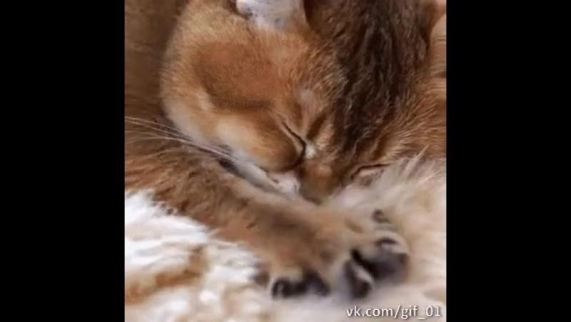 топатушки на подушке